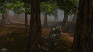 TR_Treeback